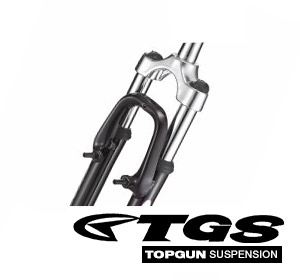 tgs-suspension