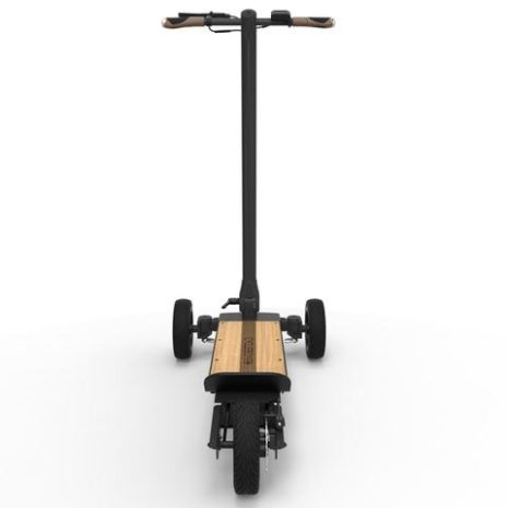 Cycleboard Elite Woody back view